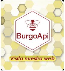 enlace_burgoapi