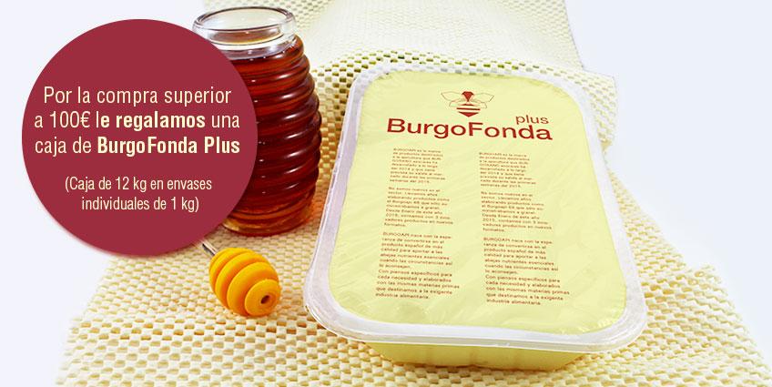 promocion-alimento-para-abejas-burgoapi